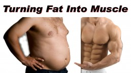 The Life Upgrades - Turning Fat to Muscle Myth