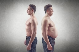 The Life Upgrades - Fat to Muscle