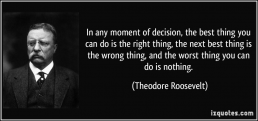 The Life Upgrades - Theodore Roosevelt Quote
