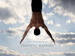 The Life Upgrades - Peaceful Warrior
