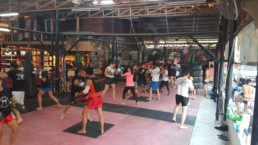 The Life Upgrades - Muay Thai Training
